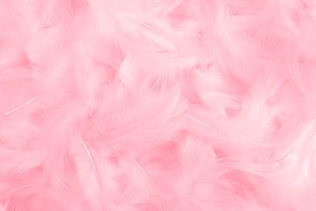 Textura rosada de las plumas como fondo.