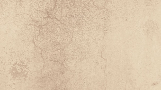 Textura rugosa textura abstracta marrón
