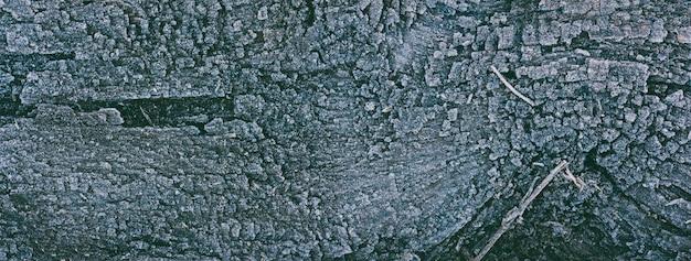 Textura de tableros de roble viejos cubiertos con hielo de escarcha, foto panorámica teñida