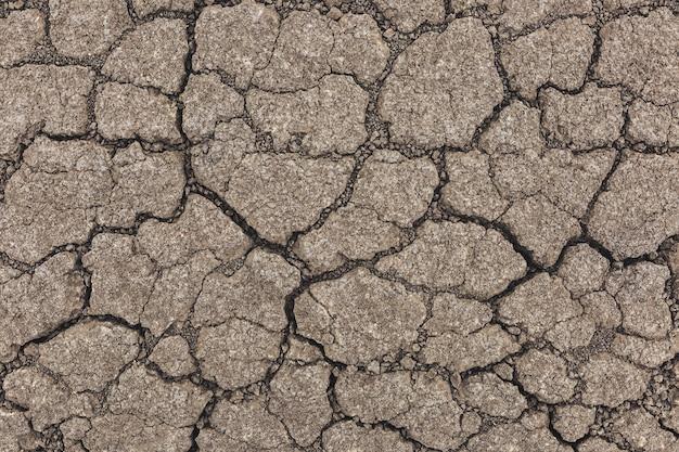 Textura de tierra agrietada gris