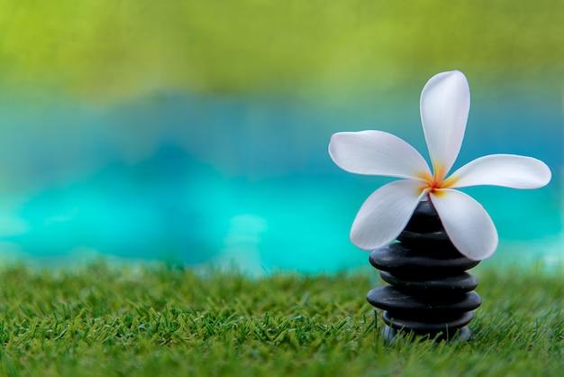 Thai spa masaje con spa de rocas y flores de plumeria cerca de la piscina. tailandia, enfoque suave y selecto