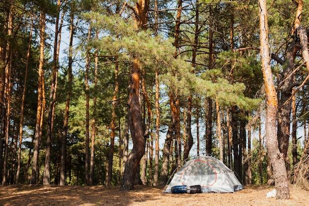 Tienda de ángulo bajo para acampar en el bosque