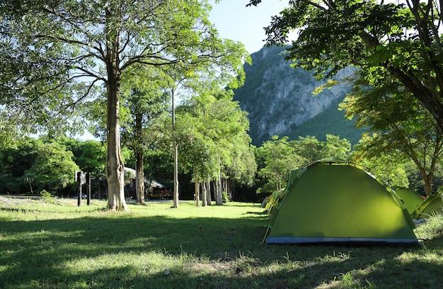 Tienda de campaña con bosque natural en camping