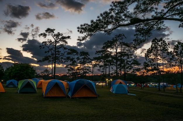 Tienda de campaña en el parque nacional.