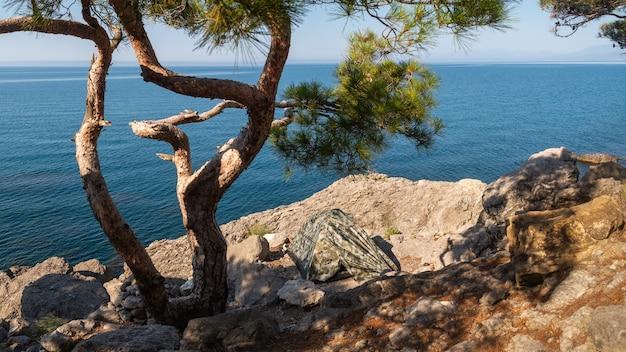 Tienda debajo de un pino en una costa rocosa, campamento turístico, lugar de descanso de verano