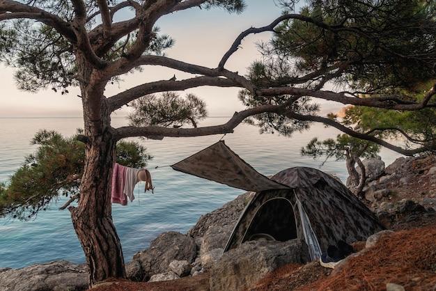 Tienda turística bajo un gran pino en la orilla del mar, lugar de descanso, campamento turístico, vacaciones
