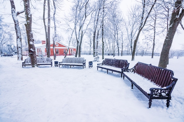 Tiendas en la nieve en el parque de la ciudad.