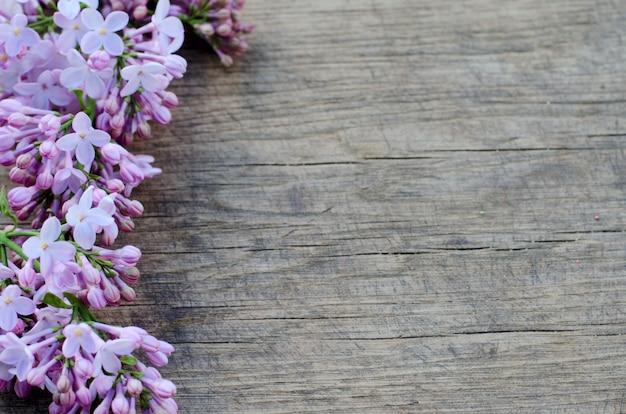 Tiernas flores de color lila púrpura sobre fondo de madera natural