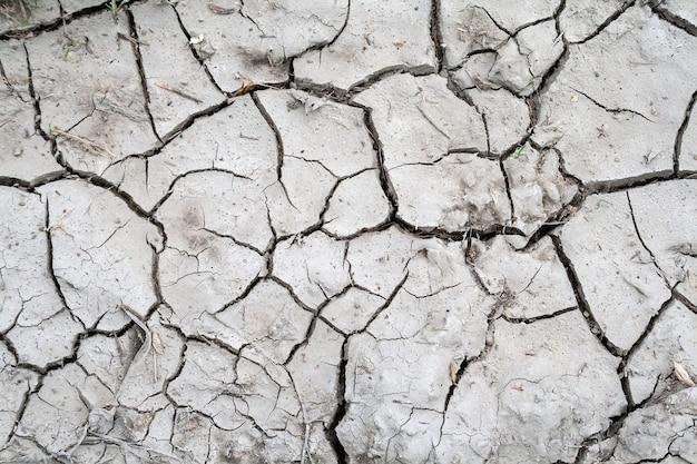 Tierra agrietada con una pequeña cantidad de pasto seco