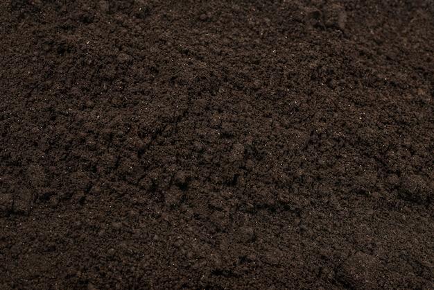 Tierra negra para el fondo de la planta.