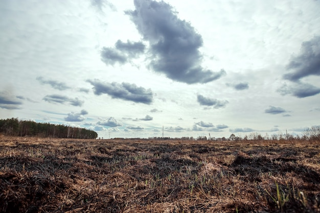 Tierra quemada, fuegos de primavera.