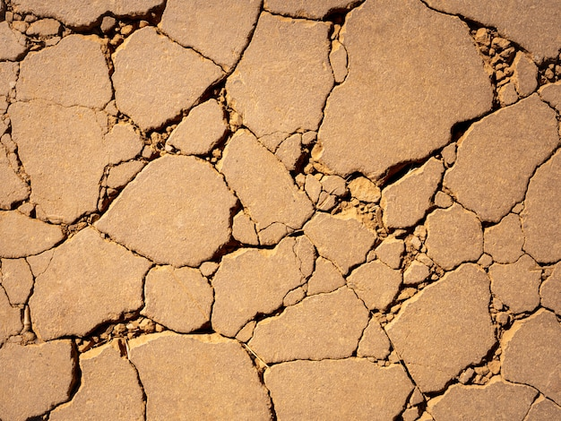 Tierra seca y agrietada entorno de suelo árido