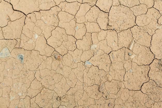 Tierra seca agrietada