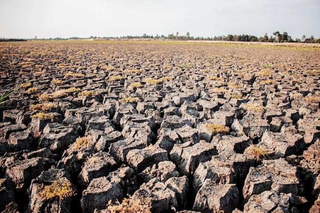 Tierra seca en el campo.