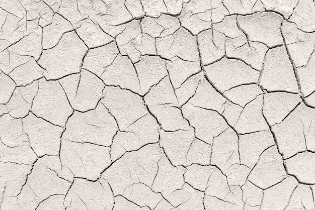 Tierra seca. fondo.