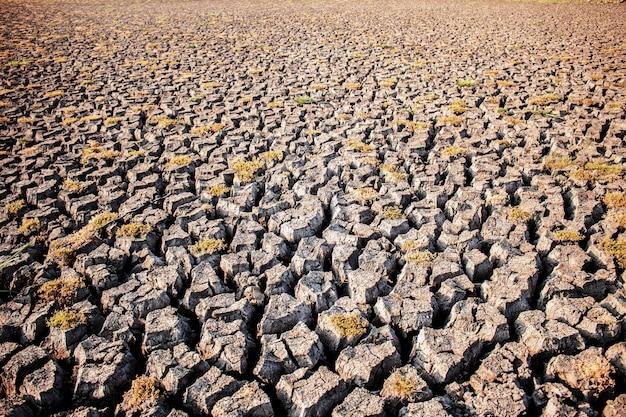 Tierra seca con textura.