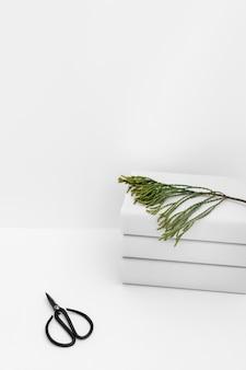 Tijera negra con ramita de cedro apilada de libros blancos sobre fondo blanco