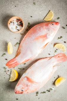 Tilapia rosada de pescado crudo fresco con especias para cocinar limón, sal, pimienta, hierbas, en la mesa de piedra gris, copyspace