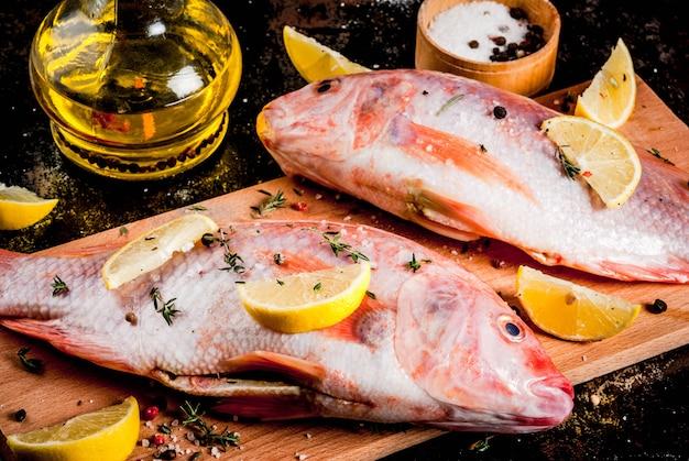 Tilapia rosada de pescado crudo fresco con especias para cocinar limón, sal, pimienta, hierbas, sobre mesa de metal oxidado negro, copyspace