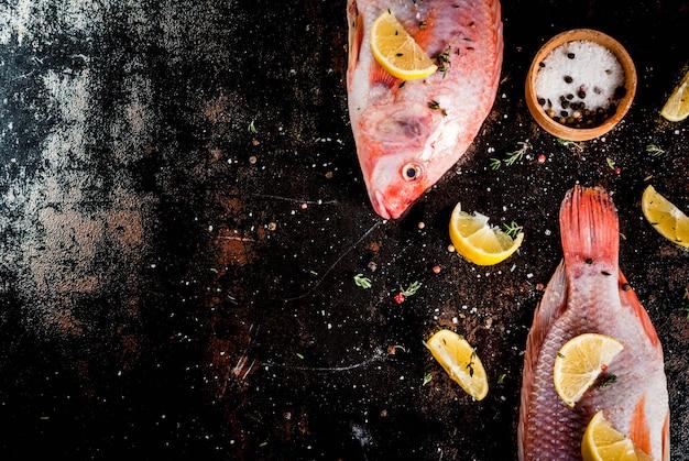 Tilapia rosada de pescado crudo fresco con especias para cocinar limón, sal, pimienta, hierbas, sobre una mesa de metal oxidado negro, vista superior de copyspace