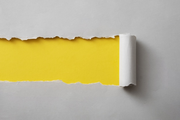 Tira de tarjeta gris rasgada y enrollada para revelar un fondo de papel amarillo colorido con espacio de copia para usar como plantilla de diseño