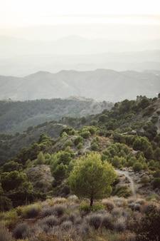 Tiro de alta vista de un solo cielo con montañas