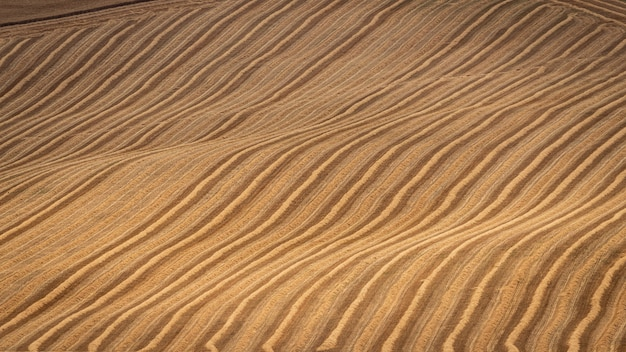 Tiro alto ángulo de colinas secas con líneas naturales.