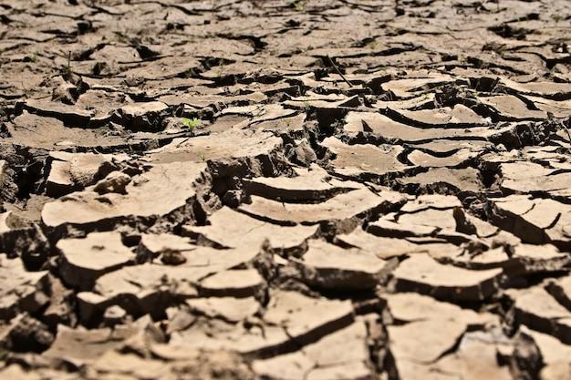Tiro de alto ángulo del suelo fangoso seco y agrietado
