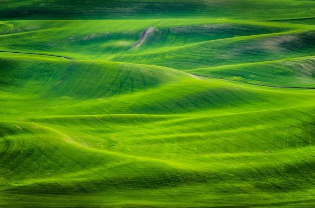 Tiro de ángulo alto de colinas cubiertas de hierba durante el día en el este de washington