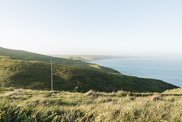 Tiro de ángulo alto de colinas cubiertas de vegetación que rodea el océano