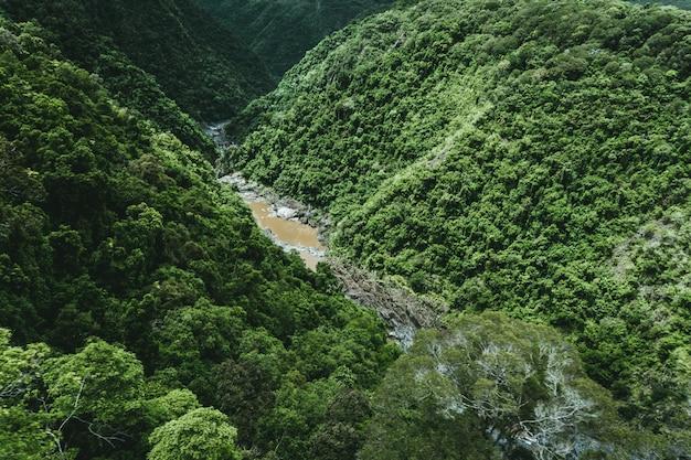 Tiro de ángulo alto de un río fangoso entre las montañas verdes en un día soleado