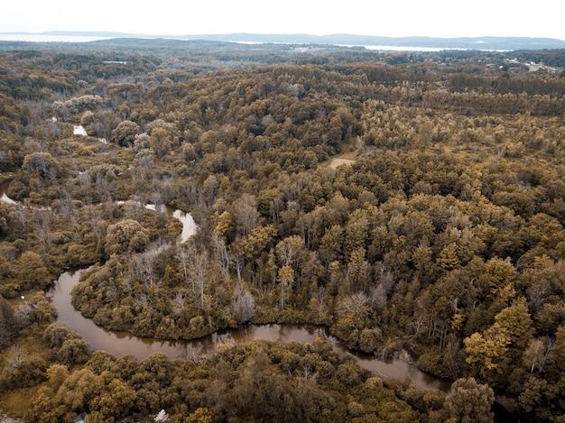 Tiro de ángulo alto de un río en medio de un bosque con árboles de hojas marrones