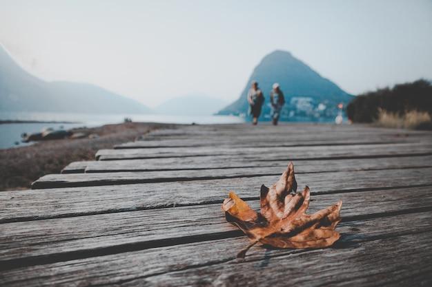 Tiro horizontal del primer de una hoja de arce del otoño aislada en un muelle de madera cerca del mar hermoso