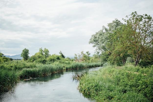 Tiro largo del río en tierras de cultivo