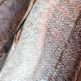 Tiro macro de pescado congelado en la tienda