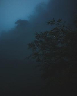 Tiro vertical de un árbol con una nube oscura