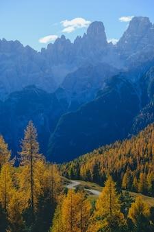 Tiro vertical de árboles amarillos y montañas con cielo azul en el fondo