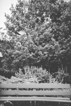 Tiro vertical de un banco cerca de árboles y plantas en blanco y negro