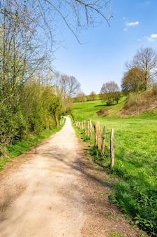 Tiro vertical estrecho camino en el campo rodeado por un valle verde