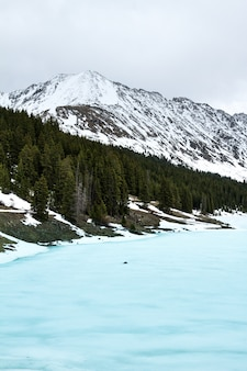 Tiro vertical de un mar helado cerca de árboles y una montaña nevada en la distancia bajo un cielo nublado