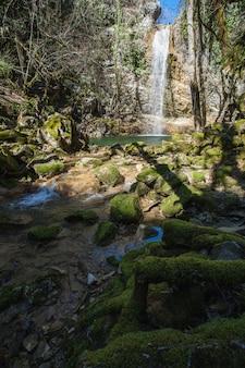 Tiro vertical de piedras cubiertas de musgo en un lago bajo la cascada butori en istria, croacia