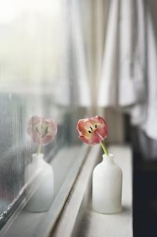 Tiro vertical del primer de un tulipán rosado en un florero blanco en un alféizar