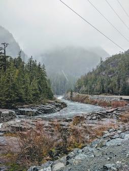 Tiro vertical de un río que fluye a través de montañas brumosas cubiertas de pinos