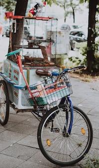 Tiro vertical selectivo del primer de una bicicleta azul con una cesta y una jaula de pájaros