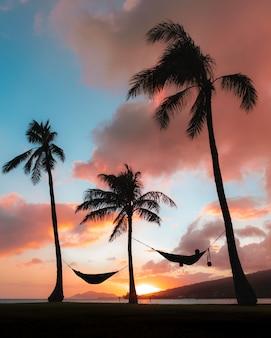 Tiro vertical de siluetas hamacas unidas a palmeras bajo el colorido cielo del atardecer