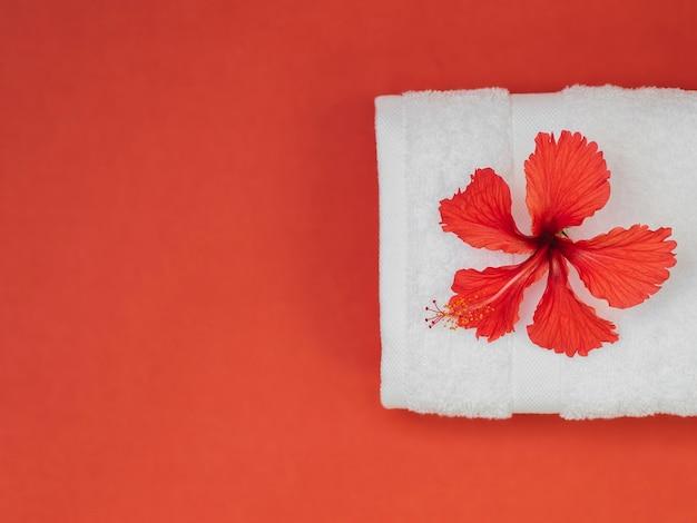 Toalla y flor de la visión superior en fondo rojo