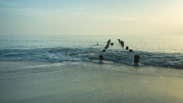 Tocón de mar