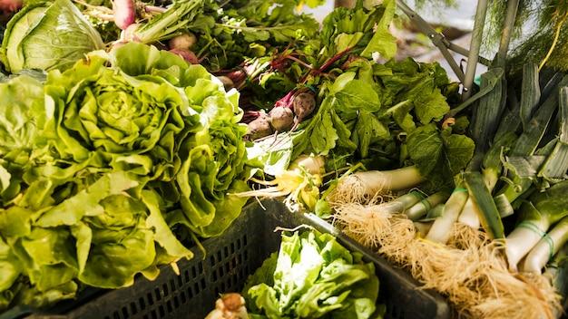 Todo tipo de vegetales verdes frescos en caja de plástico.