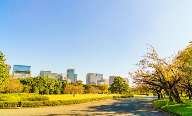 Tokio, japón paisaje urbano