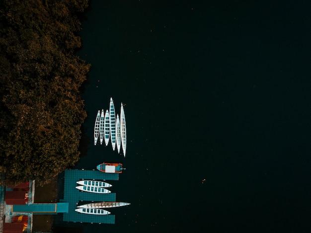 Toma aérea de barcos en un muelle y en el cuerpo del océano rodeado de árboles